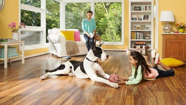 Sàn gỗ Robina bản to là sự lựa chọn hoàn hảo